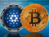 Cardano bitcoin