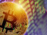 bitcoin bears