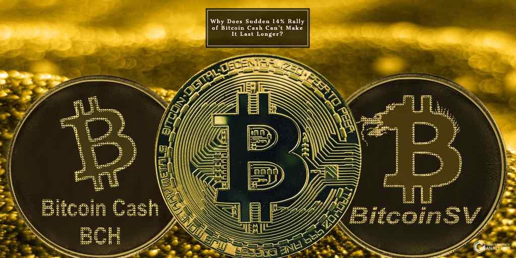 bitcoin Cash bsv btc