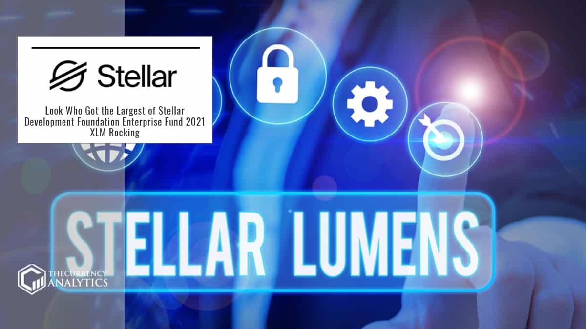 Look Who Got the Largest of Stellar Development Foundation Enterprise Fund 2021 XLM Rocking