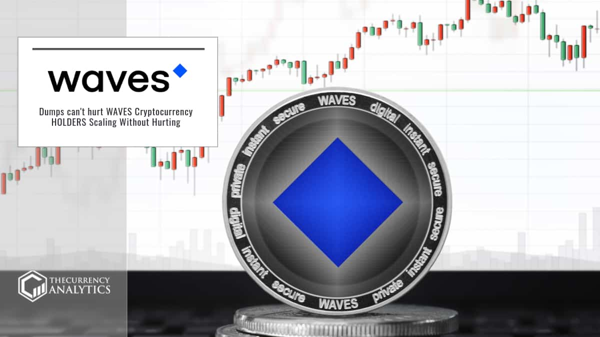 Dumps can't hurt WAVES Cryptocurrency HOLDERS Scaling Without Hurting